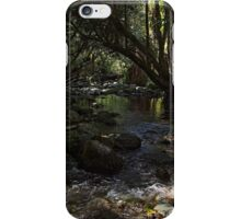 Deep forest tranquility iPhone Case/Skin