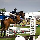 Show Jumper. The BBC. by Country  Pursuits