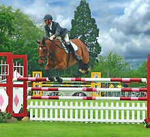 Showjumping - Guildford County Show - 2009 by Colin  Williams Photography