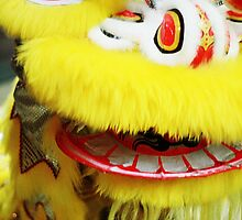 Chinese Lion Dance by growtograph