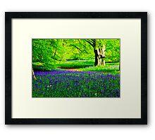 Bluebell Wood - Thorpe Perrow #2 Framed Print