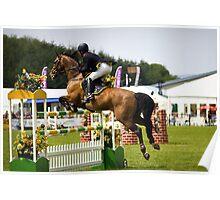 Show Jumper. Fence number five. Poster