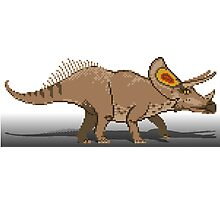 Torosaurus Photographic Print