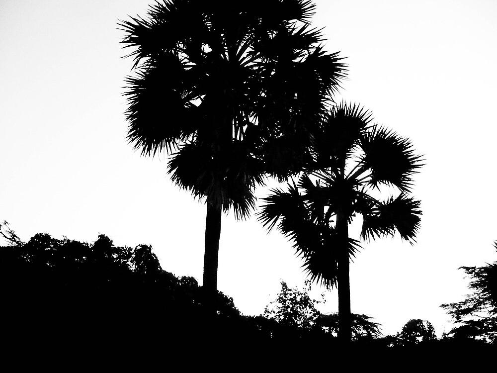 shadow tree by vigon