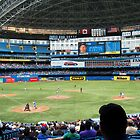 Baseball in Toronto, Canada by Ralph Angelillo