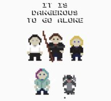 Team Dresden: It is dangerous to go alone Kids Clothes