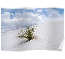 White Sands Dune Poster