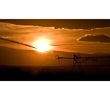 Agriculture Photographic Print