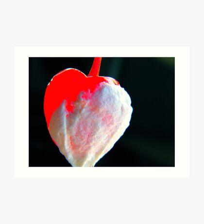 Cherry Cream Art Print