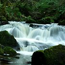 Golitha falls thanks jaffa by Russell Couch