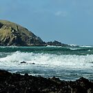 Stepper Point Padstow by Russell Couch