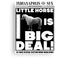 Little horse is big deal. (white) Canvas Print