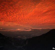 A New Dawn by Bernai Velarde