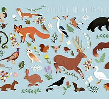 Wildlife of the United Kingdom by sophieeves90