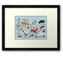 Wildlife of the United Kingdom Framed Print