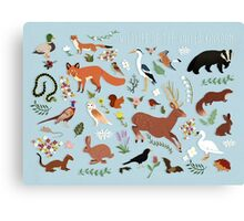 Wildlife of the United Kingdom Canvas Print