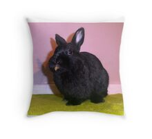 Netherland Dwarf Throw Pillow