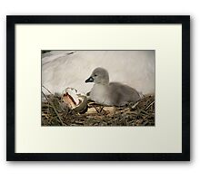 I am Moved Framed Print