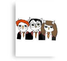 Harry, Ron and Hermione as Owls Metal Print