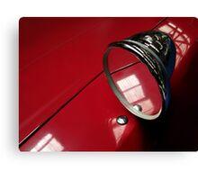Car mirror* Canvas Print