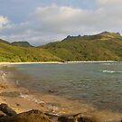 Waya Island, Fiji by Explorations Africa Dan MacKenzie