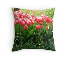 A sunny day and tulips! Throw Pillow