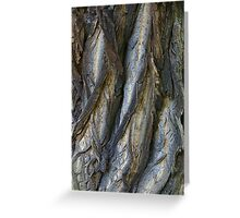 Bark in the forrest 3 Greeting Card