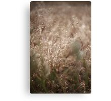 The Wind Owns The Grass Canvas Print