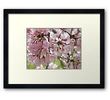 Pure and Gentle Framed Print