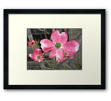 With Open Arms Framed Print