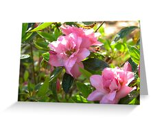Pink Elegance Greeting Card