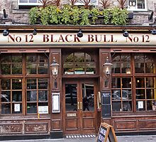 Black Bull by Lynne Morris