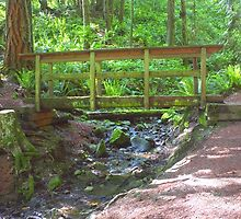 Wooden Bridge Over Mountain Stream by Stacey Lynn Payne