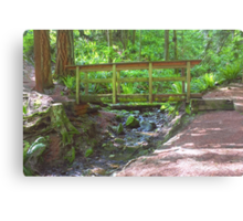 Wooden Bridge Over Mountain Stream Canvas Print