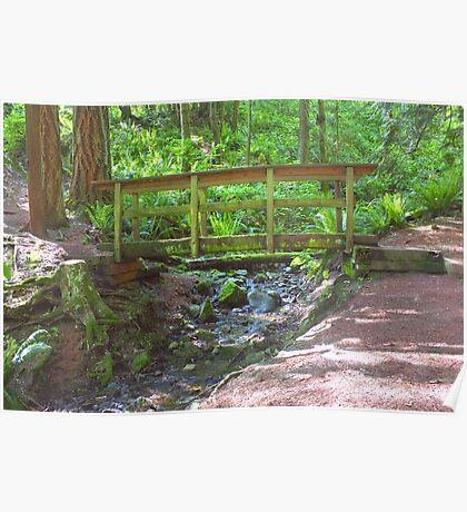 Wooden Bridge Over Mountain Stream Poster