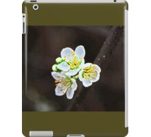 Painted Blossoms iPad Case/Skin