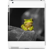 Eastern Dwarf Tree Frog - Black and White background iPad Case/Skin
