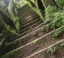The Forty-Nine Steps of the Grand Staircase by randomness