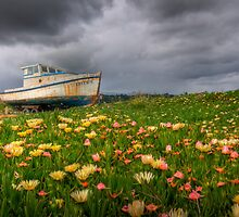 Grounded by Justin Baer