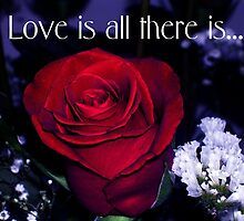 Love is all there is... by artgoddess