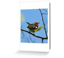 Blackburnian Warbler Greeting Card