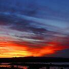 Noosa,Qld,Australia by Rosina  Lamberti