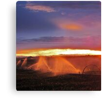 Sunset and Sprinklers Canvas Print