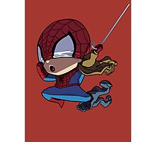 Spiderman Photographic Print