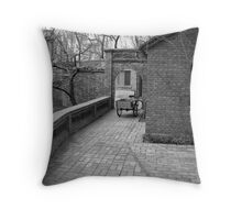 Beijing Building Throw Pillow