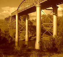 Dickabram Bridge - Sepia by MerrilynW