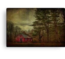 Watching Over Me Canvas Print