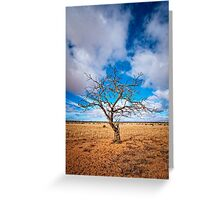 Lonely Tree at Steinfeld - South Australia Greeting Card
