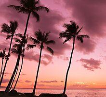 Maui Silhouette Sunset by Athena Mckinzie