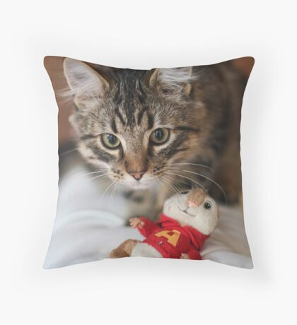 Rubix and the Chipmunk Throw Pillow